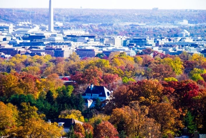 12 Fall/Winter Activities in Northern Virginia and the D.C. Area